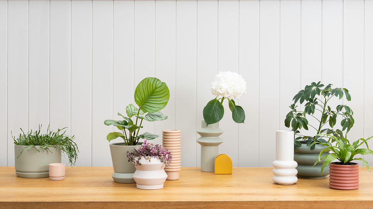 The home of beautiful plant pots